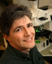 Dr. Matthew Breen