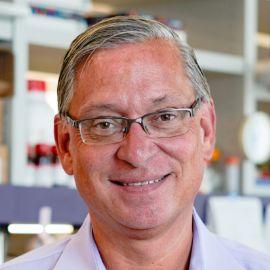 Dr. Steve Perrin Headshot